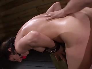 Duteous bitch endures rough sexual hypnotic greater than cam